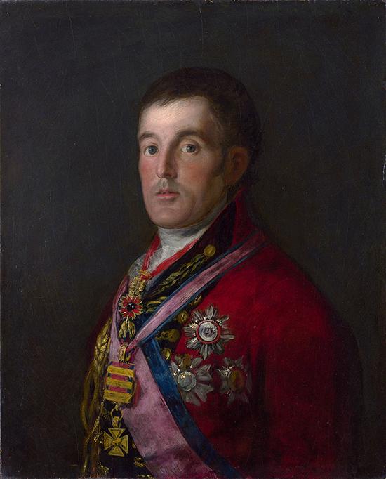 Goya's Wellington
